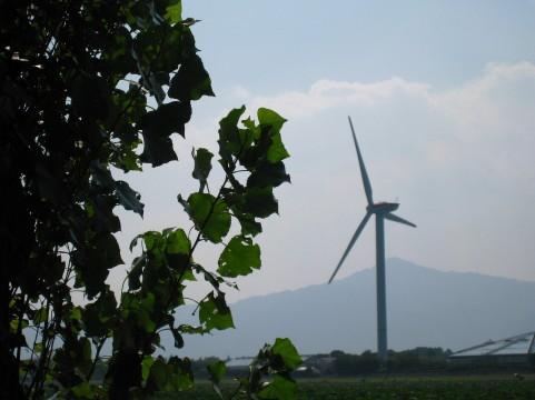 いつも回っている風車